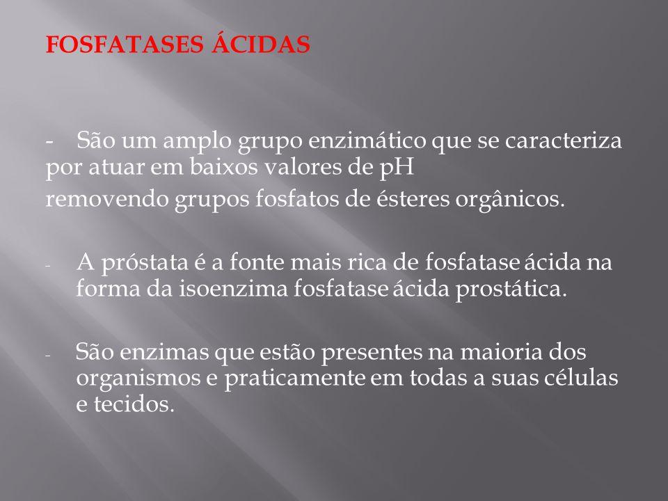 FOSFATASES ÁCIDAS - São um amplo grupo enzimático que se caracteriza por atuar em baixos valores de pH.