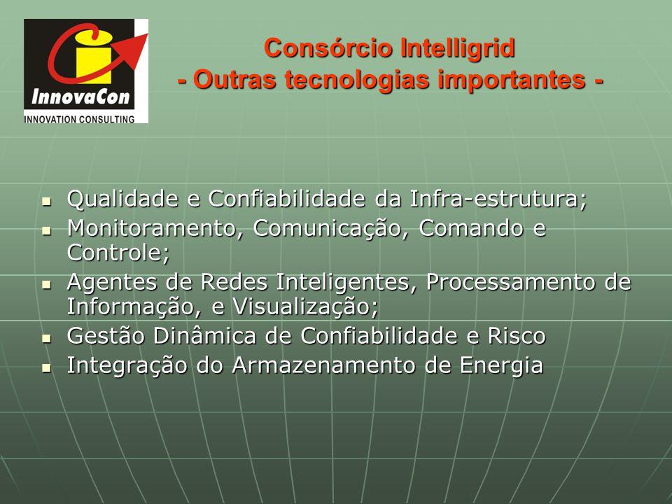 Consórcio Intelligrid - Outras tecnologias importantes -