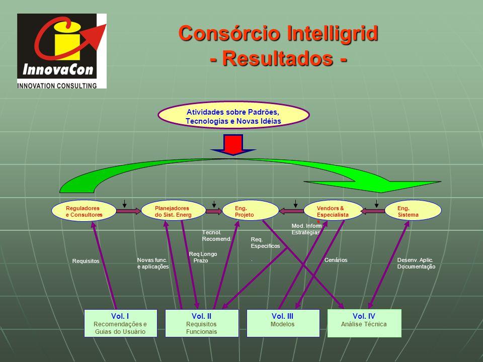 Consórcio Intelligrid - Resultados -