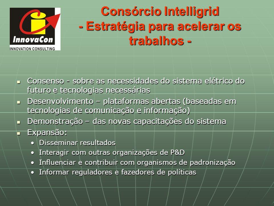 Consórcio Intelligrid - Estratégia para acelerar os trabalhos -