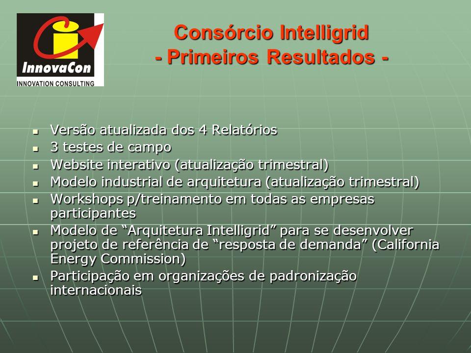 Consórcio Intelligrid - Primeiros Resultados -