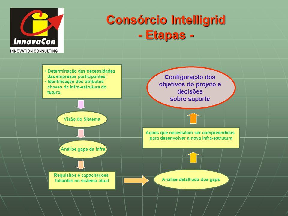 Consórcio Intelligrid - Etapas -