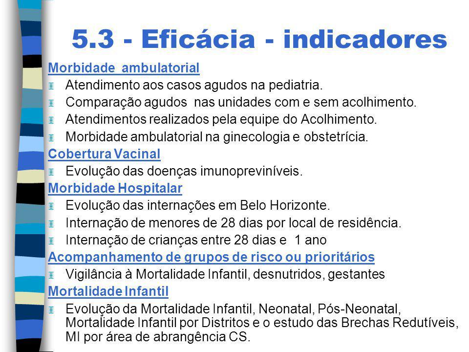 5.3 - Eficácia - indicadores