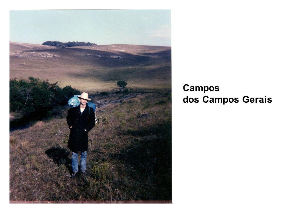 Campos dos Campos Gerais