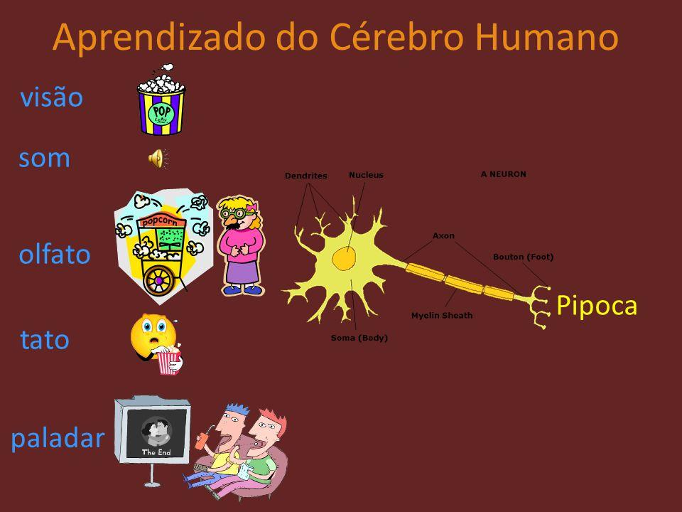 Aprendizado do Cérebro Humano