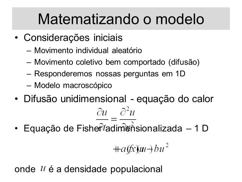 Matematizando o modelo