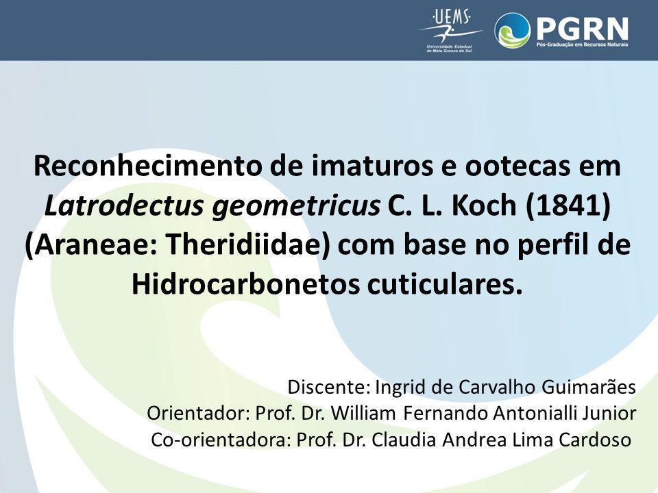 Reconhecimento de imaturos e ootecas em Latrodectus geometricus C. L