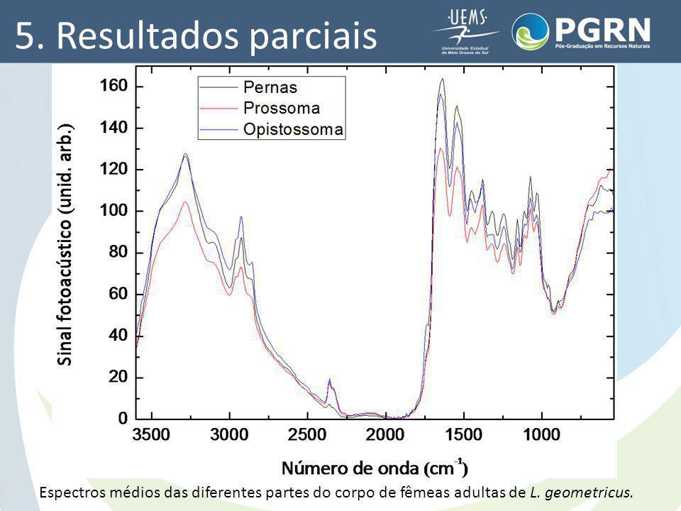 5. Resultados parciais Espectros médios das diferentes partes do corpo de fêmeas adultas de L.