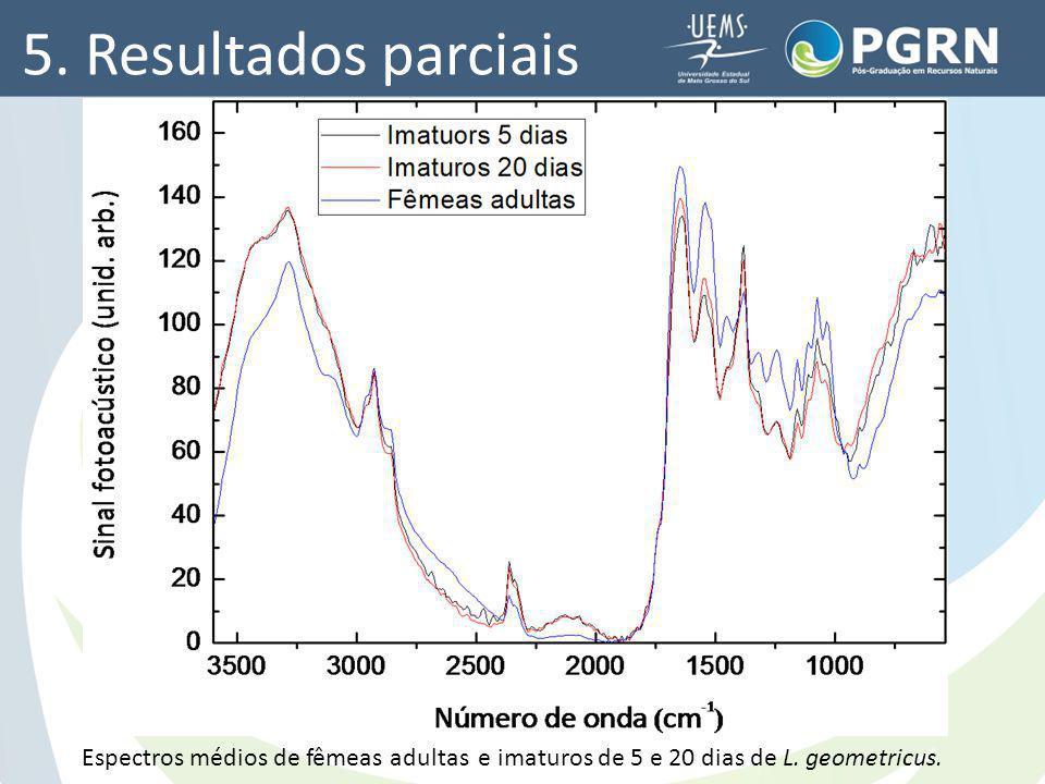 5. Resultados parciais Espectros médios de fêmeas adultas e imaturos de 5 e 20 dias de L.