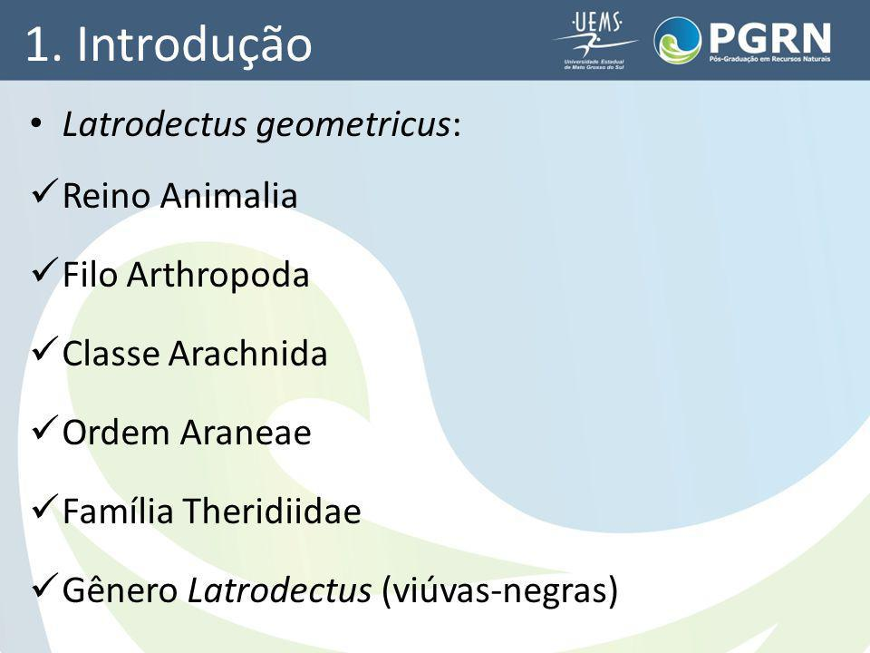 1. Introdução Latrodectus geometricus: Reino Animalia Filo Arthropoda