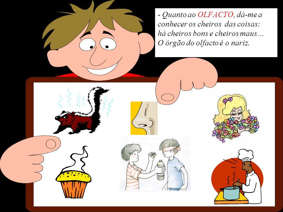 - Quanto ao OLFACTO, dá-me a conhecer os cheiros das coisas: há cheiros bons e cheiros maus… O órgão do olfacto é o nariz.