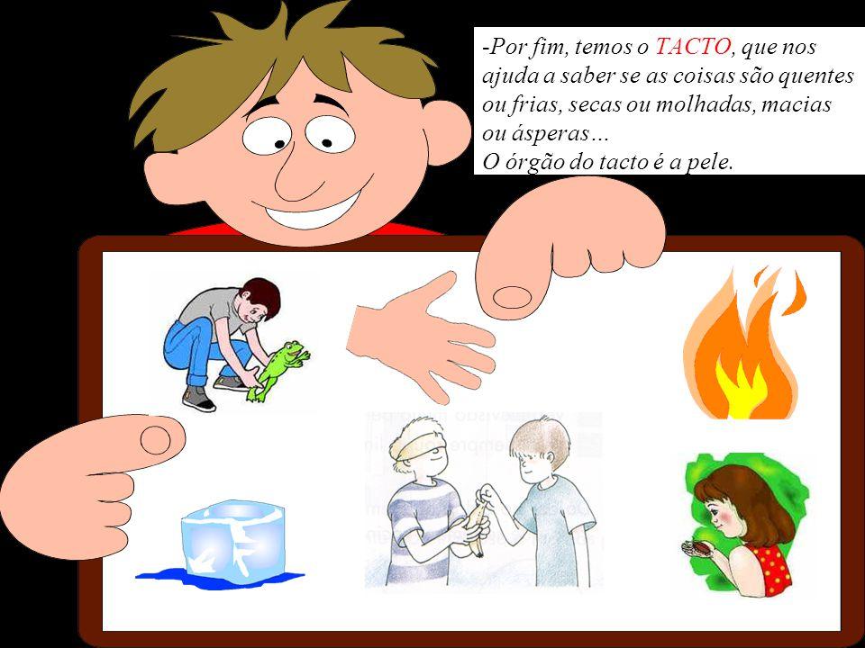 Por fim, temos o TACTO, que nos ajuda a saber se as coisas são quentes ou frias, secas ou molhadas, macias ou ásperas… O órgão do tacto é a pele.