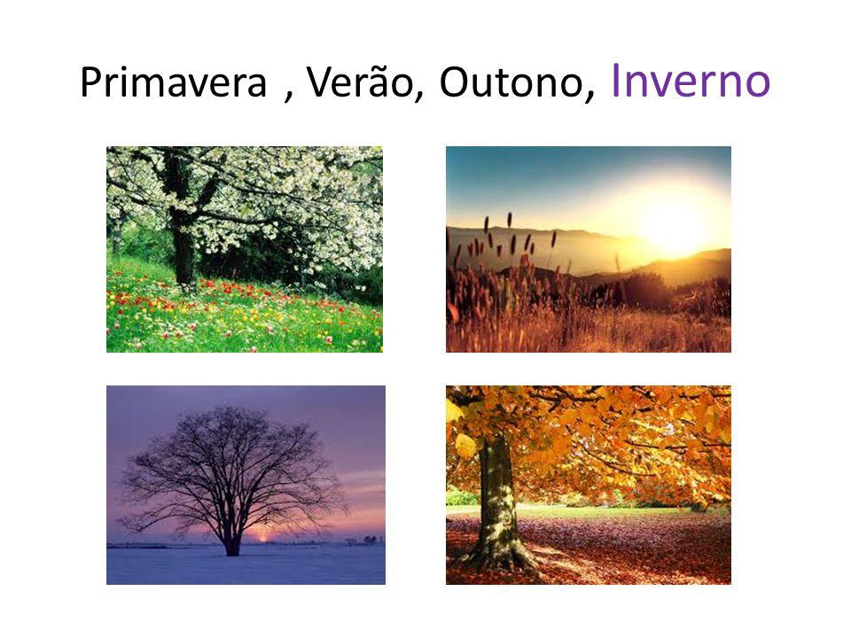 Primavera , Verão, Outono, Inverno