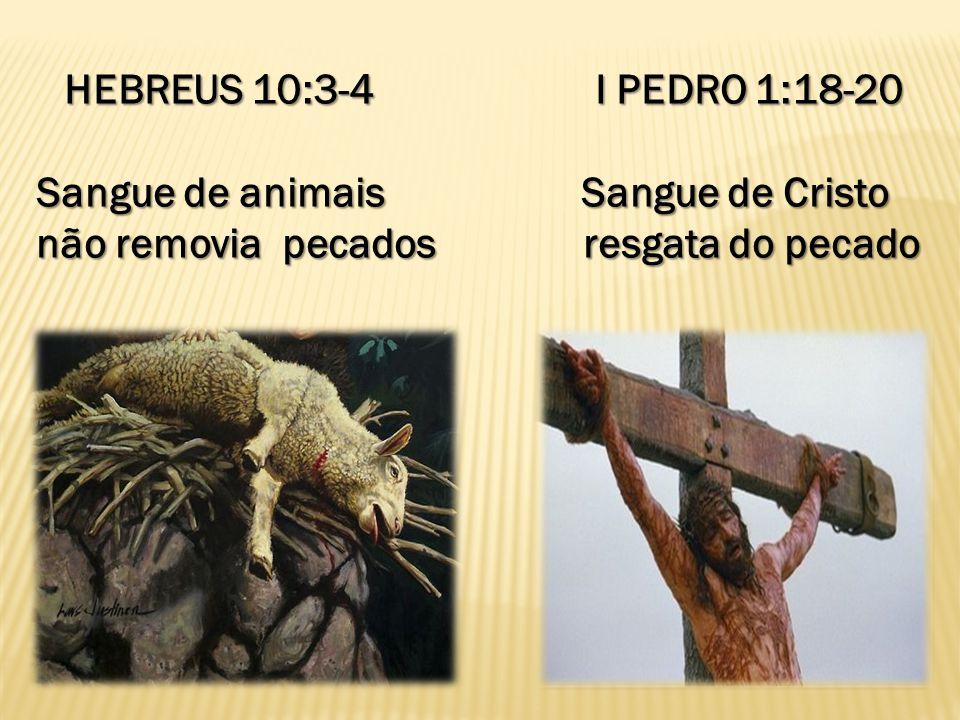 HEBREUS 10:3-4 I PEDRO 1:18-20 Sangue de animais Sangue de Cristo.