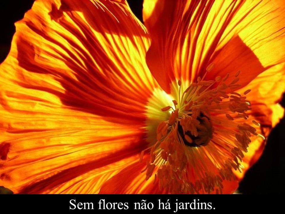 Sem flores não há jardins.