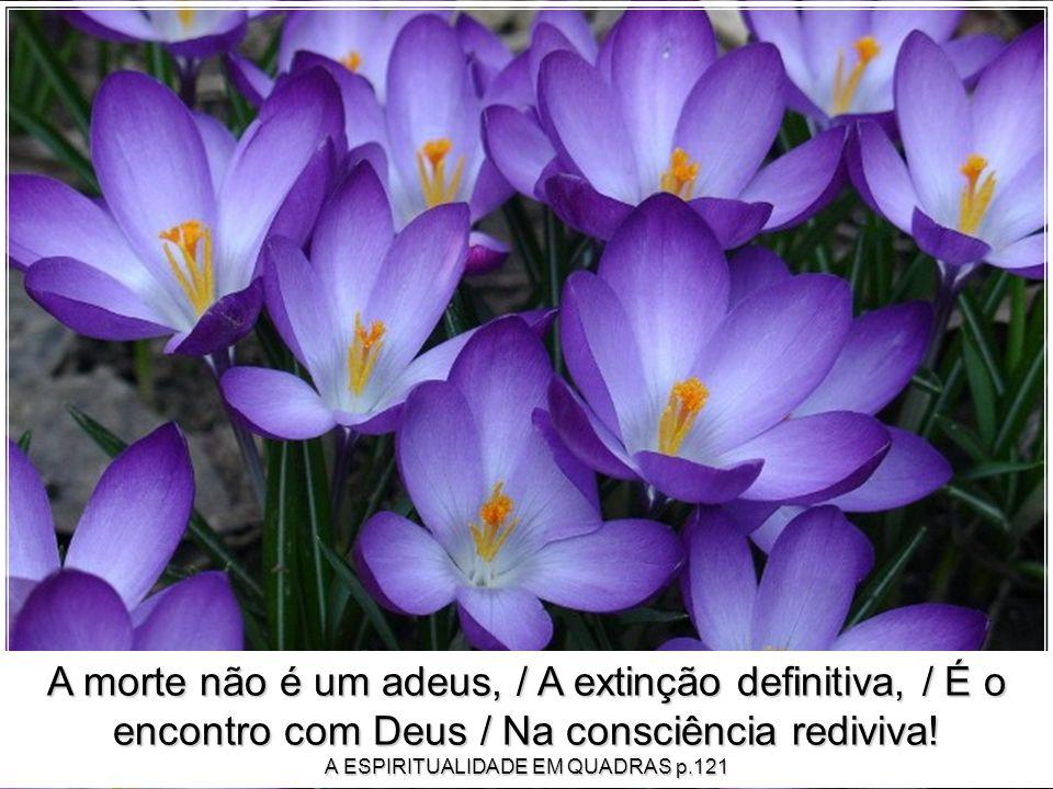 A morte não é um adeus, / A extinção definitiva, / É o encontro com Deus / Na consciência rediviva.