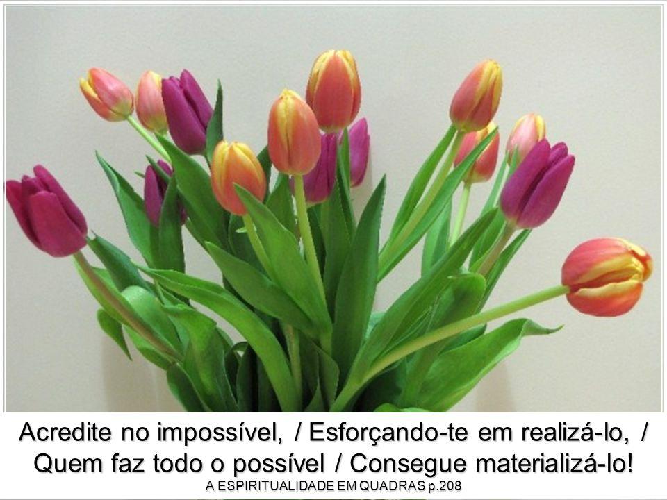 Acredite no impossível, / Esforçando-te em realizá-lo, / Quem faz todo o possível / Consegue materializá-lo.