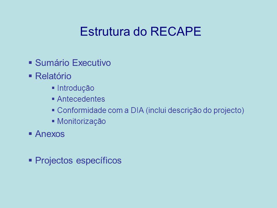 Estrutura do RECAPE Sumário Executivo Relatório Anexos