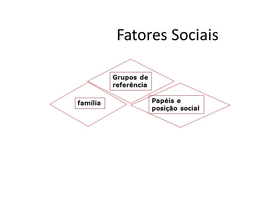 Fatores Sociais Grupos de referência Papéis e posição social família