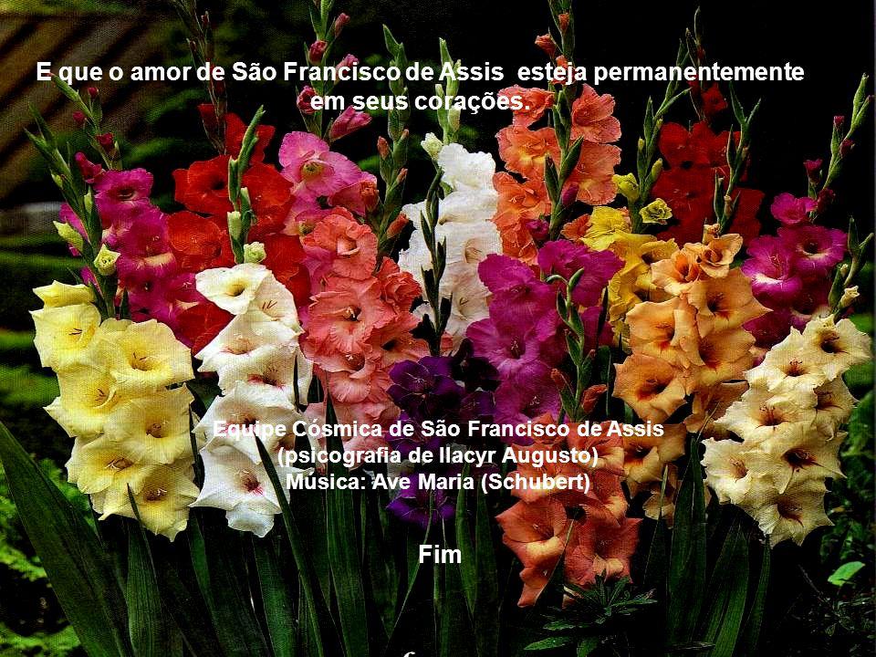 E que o amor de São Francisco de Assis esteja permanentemente em seus corações.