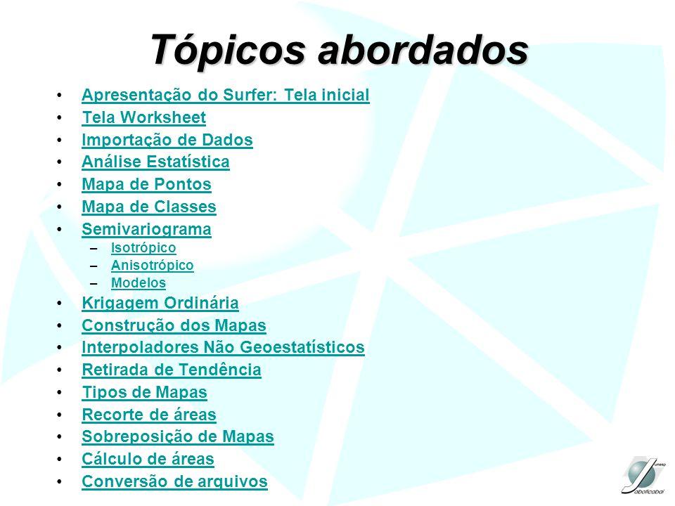 Tópicos abordados Apresentação do Surfer: Tela inicial Tela Worksheet