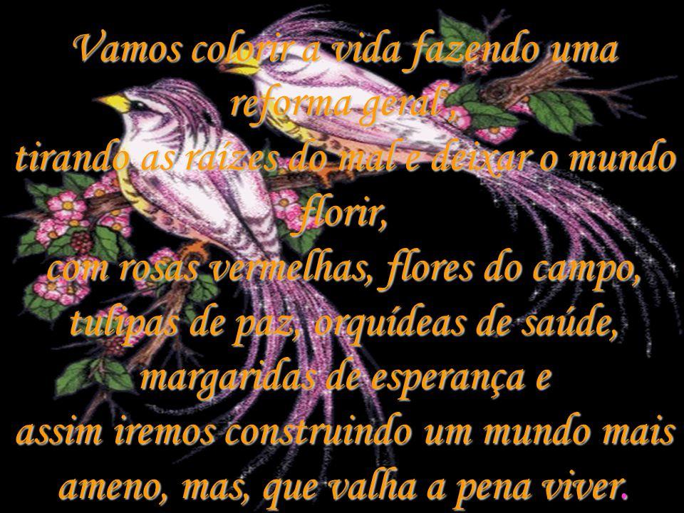 Vamos colorir a vida fazendo uma reforma geral , tirando as raízes do mal e deixar o mundo florir, com rosas vermelhas, flores do campo, tulipas de paz, orquídeas de saúde, margaridas de esperança e assim iremos construindo um mundo mais ameno, mas, que valha a pena viver.