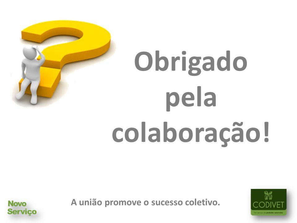 A união promove o sucesso coletivo.