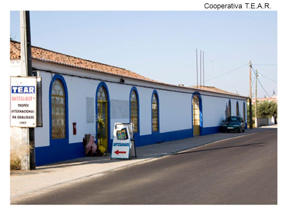 Cooperativa T.E.A.R.