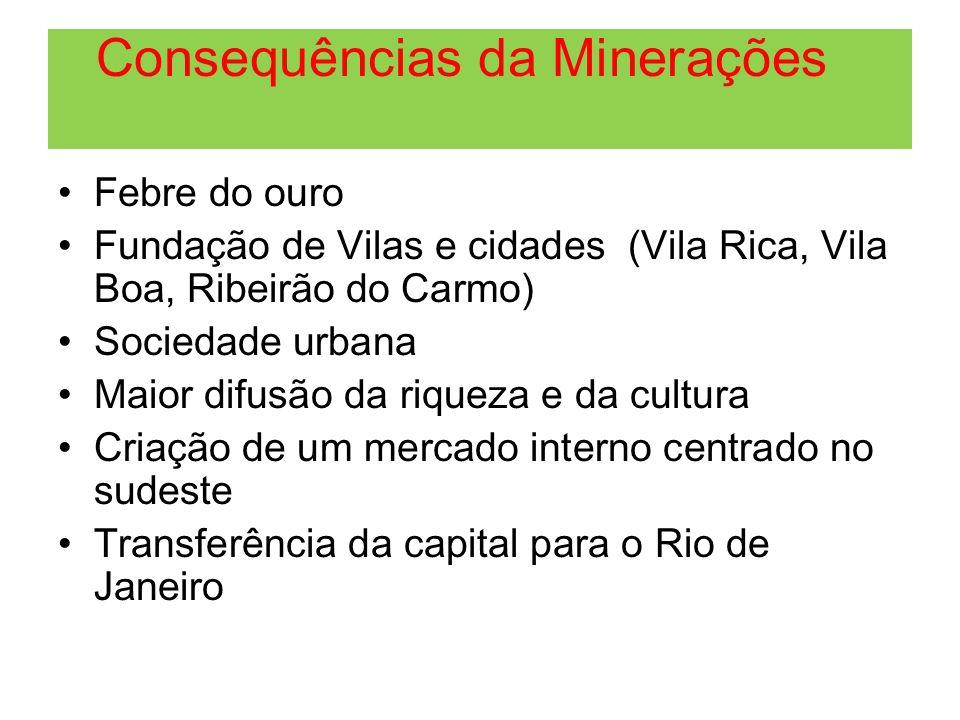 Consequências da Minerações