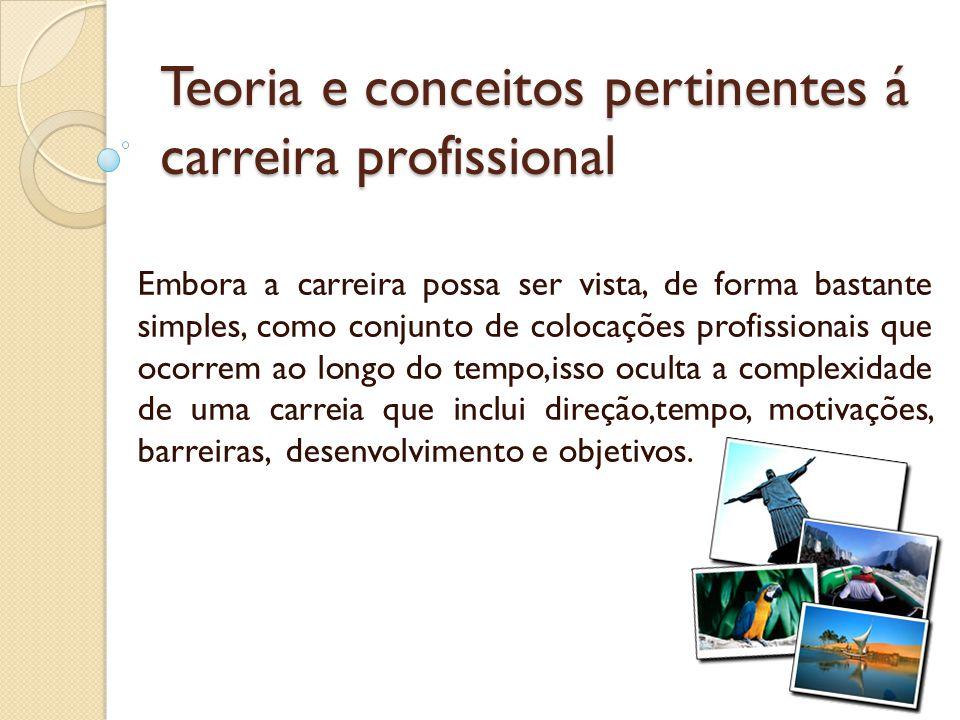 Teoria e conceitos pertinentes á carreira profissional