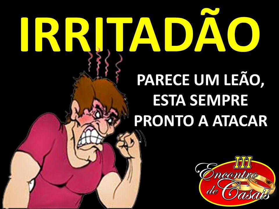 IRRITADÃO PARECE UM LEÃO, ESTA SEMPRE PRONTO A ATACAR