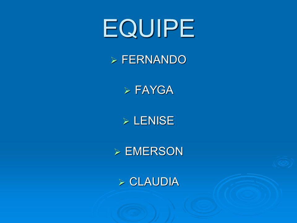 EQUIPE FERNANDO FAYGA LENISE EMERSON CLAUDIA