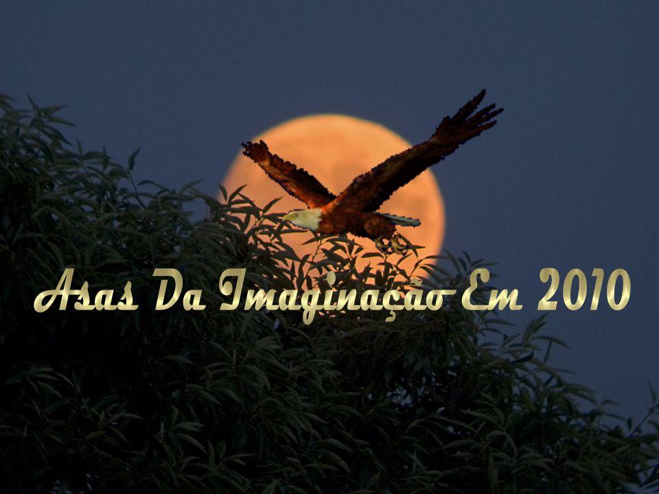 Asas Da Imaginação Em 2010
