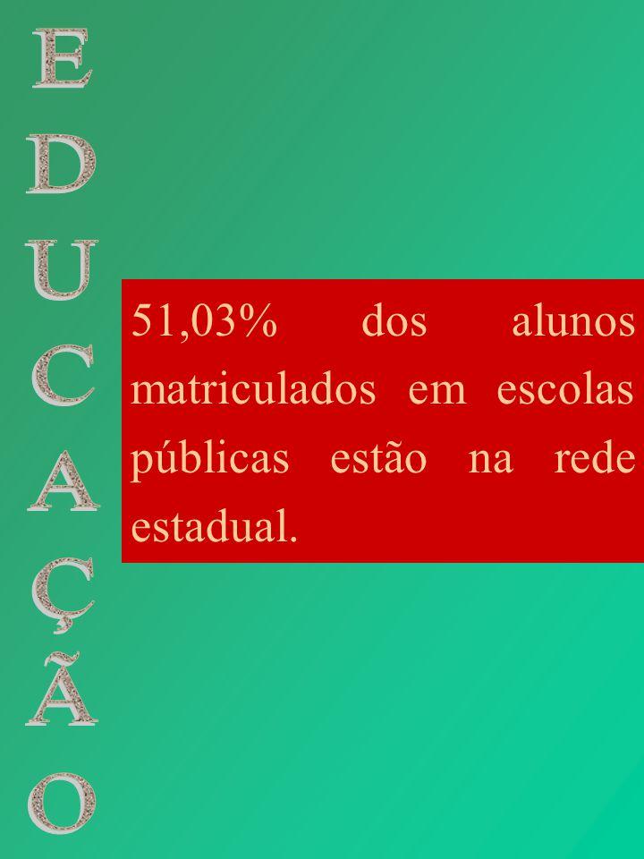 51,03% dos alunos matriculados em escolas públicas estão na rede estadual.