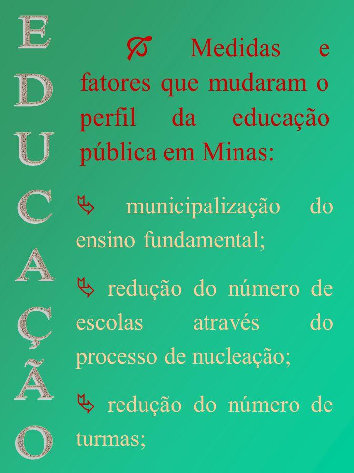  Medidas e fatores que mudaram o perfil da educação pública em Minas: