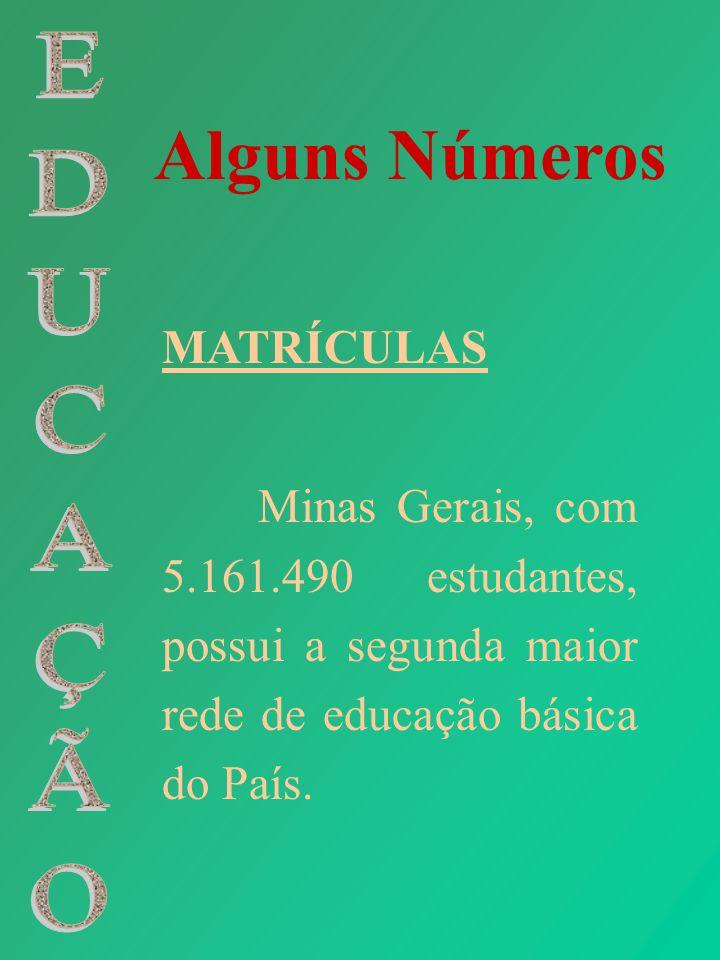 Alguns Números EDUCAÇÃO MATRÍCULAS