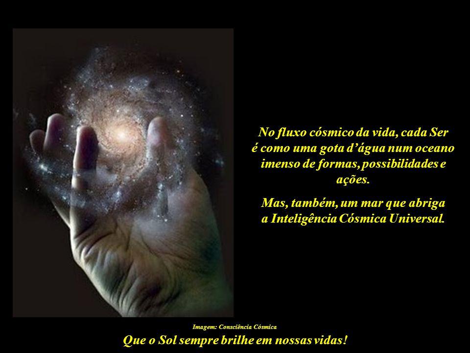 No fluxo cósmico da vida, cada Ser