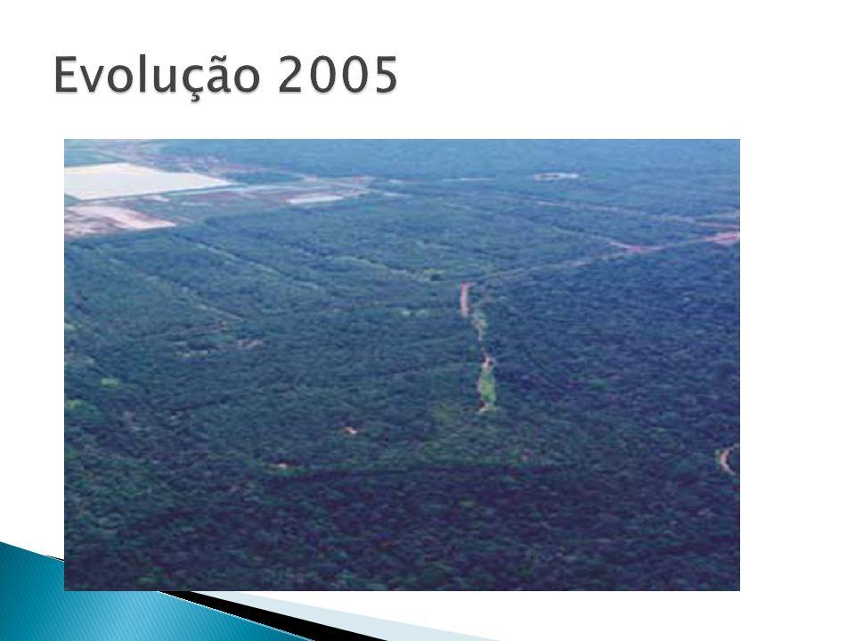 Evolução 2005