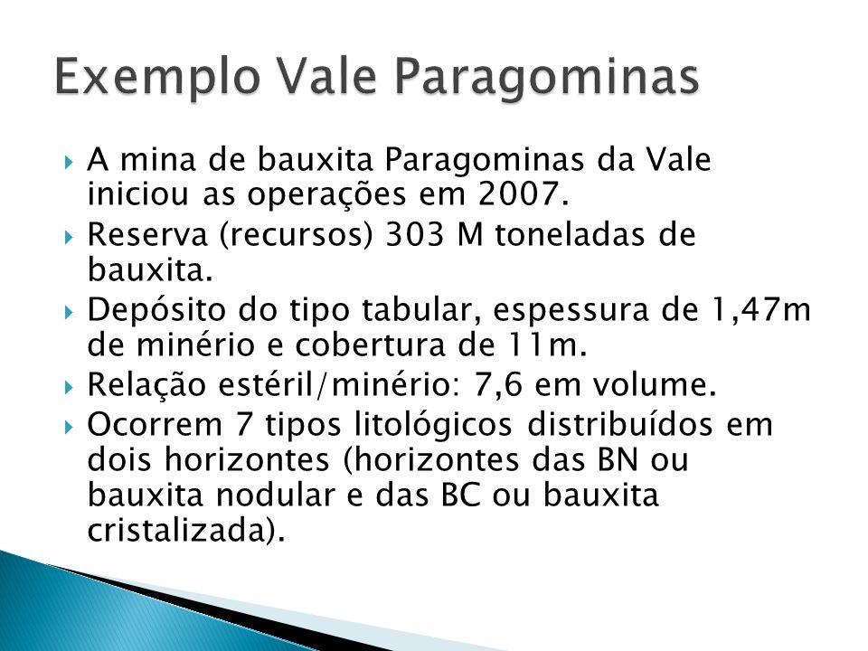 Exemplo Vale Paragominas