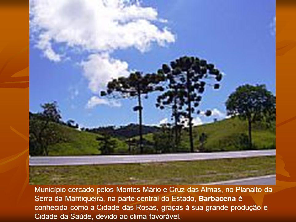 Município cercado pelos Montes Mário e Cruz das Almas, no Planalto da Serra da Mantiqueira, na parte central do Estado, Barbacena é conhecida como a Cidade das Rosas, graças à sua grande produção e Cidade da Saúde, devido ao clima favorável.