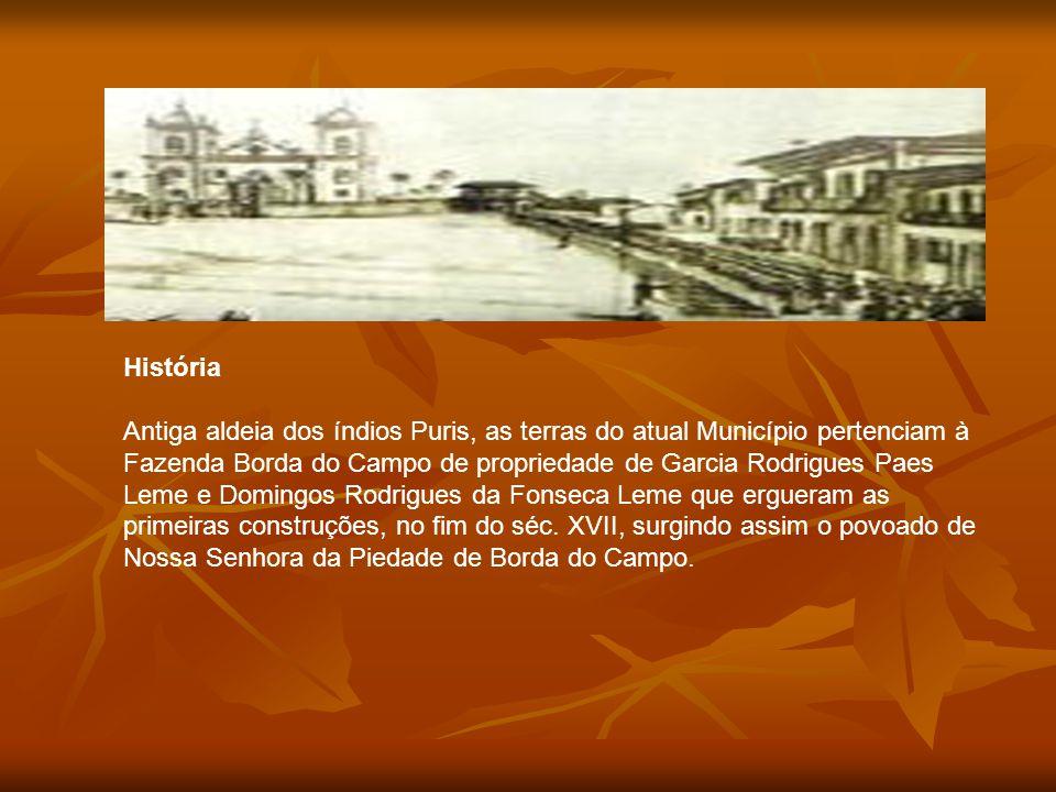 História Antiga aldeia dos índios Puris, as terras do atual Município pertenciam à Fazenda Borda do Campo de propriedade de Garcia Rodrigues Paes Leme e Domingos Rodrigues da Fonseca Leme que ergueram as primeiras construções, no fim do séc.