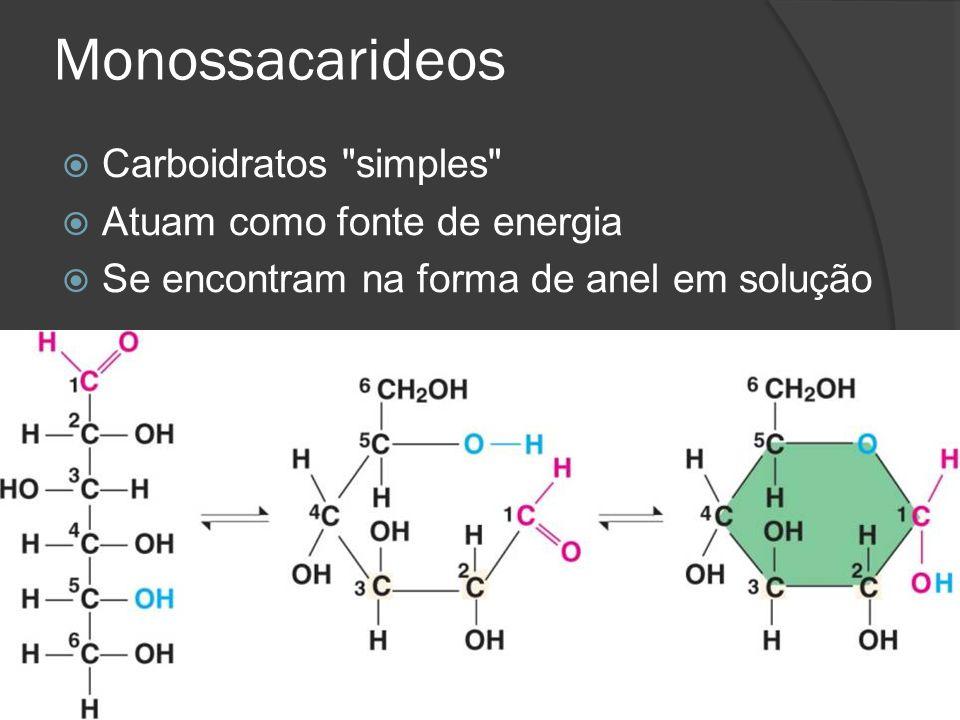 Monossacarideos Carboidratos simples Atuam como fonte de energia
