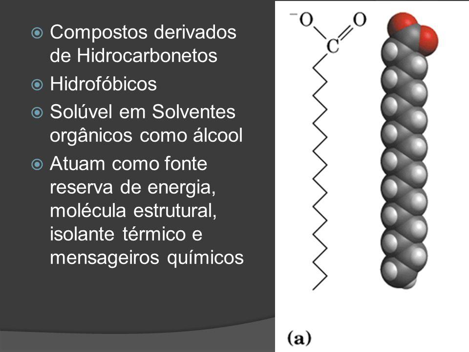 Compostos derivados de Hidrocarbonetos