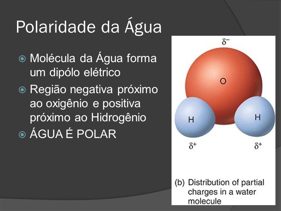 Polaridade da Água Molécula da Água forma um dipólo elétrico