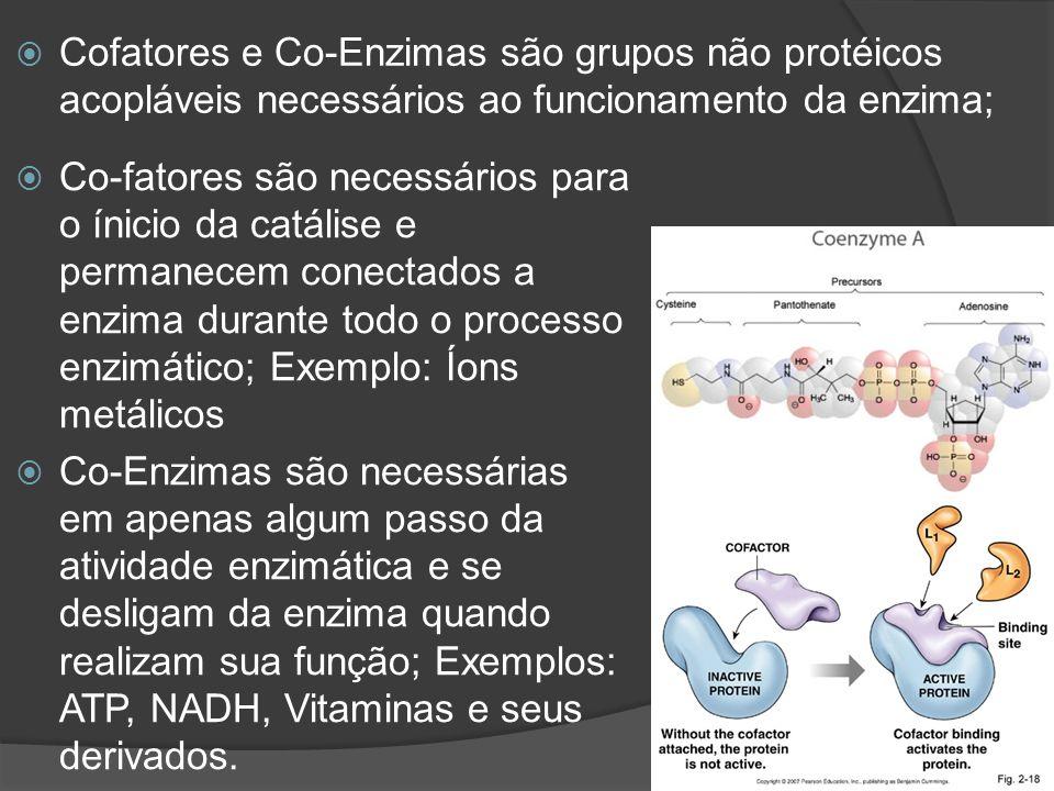 Cofatores e Co-Enzimas são grupos não protéicos acopláveis necessários ao funcionamento da enzima;