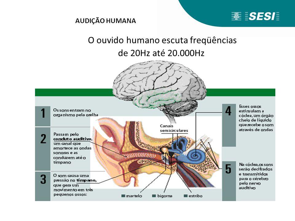 O ouvido humano escuta freqüências