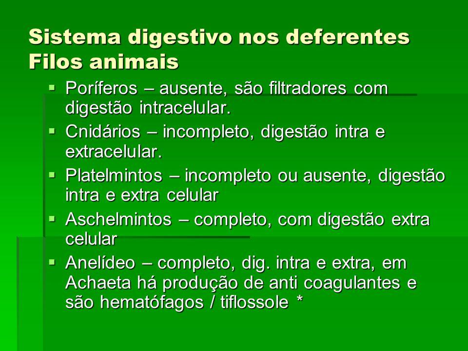 Sistema digestivo nos deferentes Filos animais