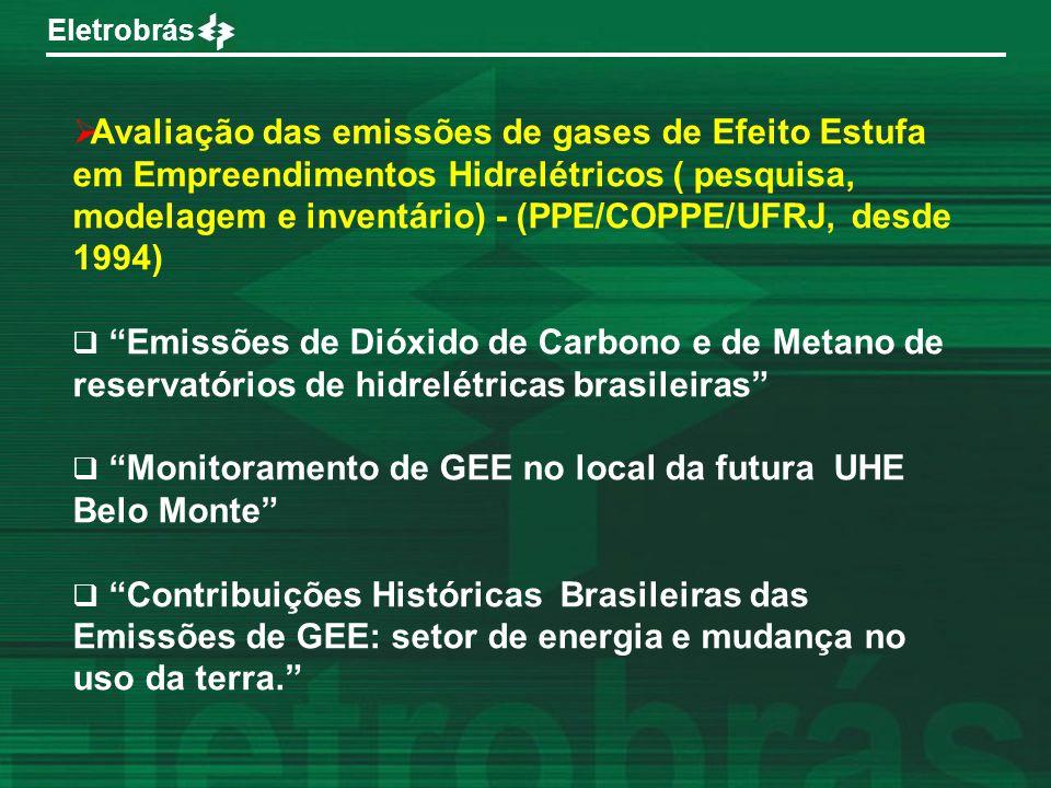 Avaliação das emissões de gases de Efeito Estufa em Empreendimentos Hidrelétricos ( pesquisa, modelagem e inventário) - (PPE/COPPE/UFRJ, desde 1994)
