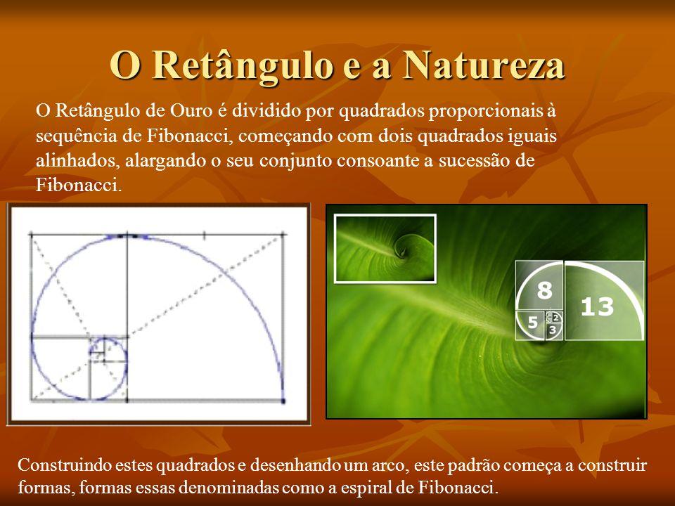 O Retângulo e a Natureza