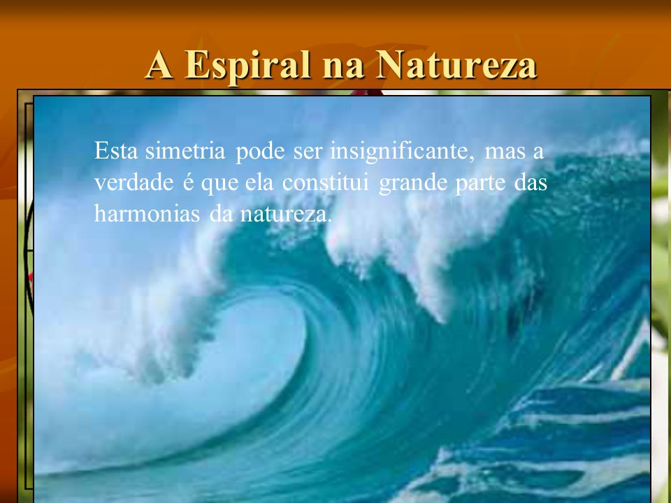 A Espiral na Natureza Esta simetria pode ser insignificante, mas a verdade é que ela constitui grande parte das harmonias da natureza.